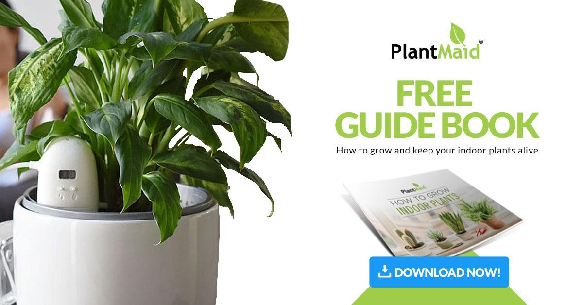 PlantMaid eBook download banner