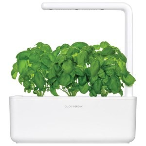 Click and Grow hydroponics