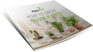 Grown Plants eBook cover