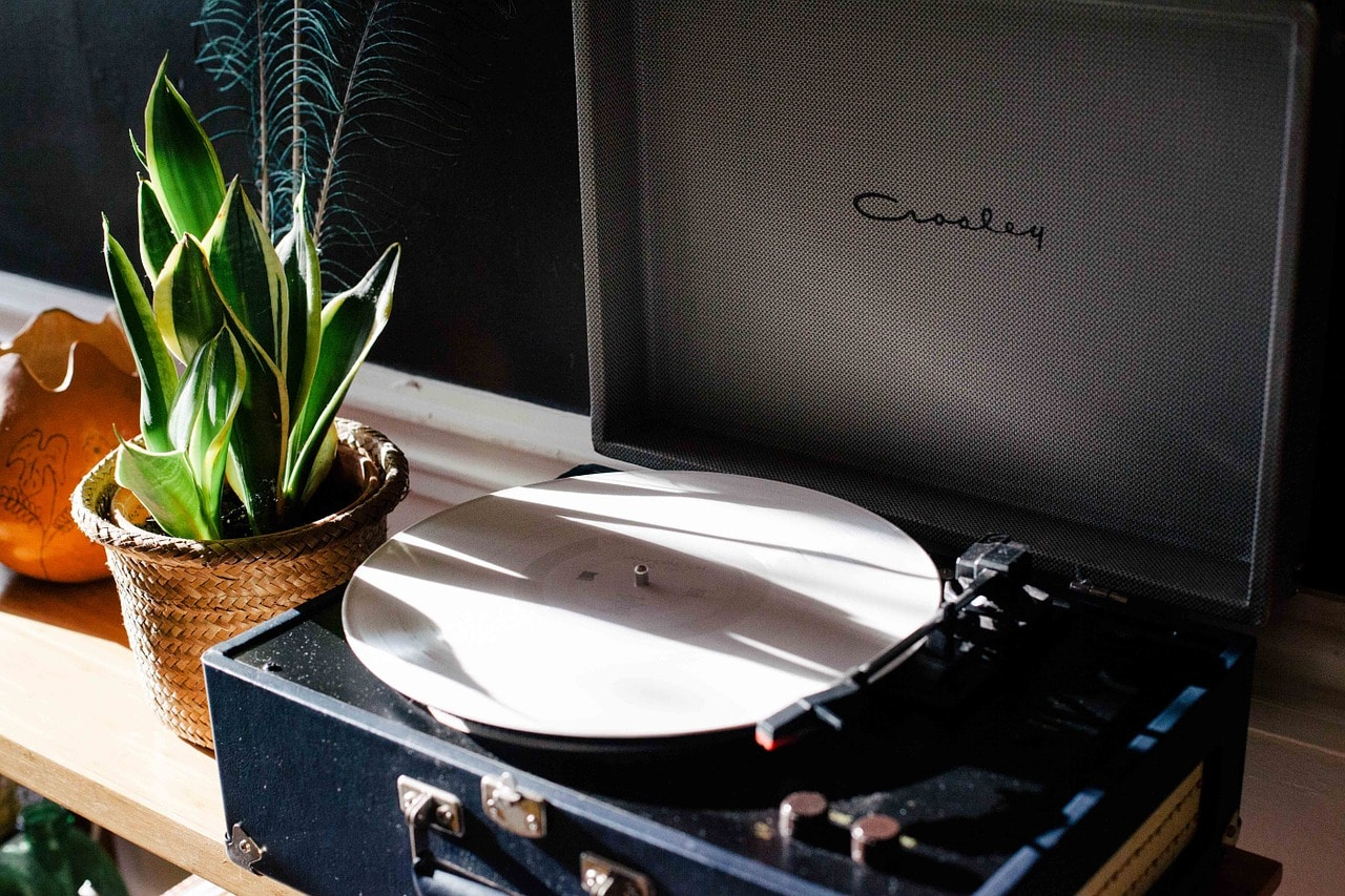 Plant next to a record player