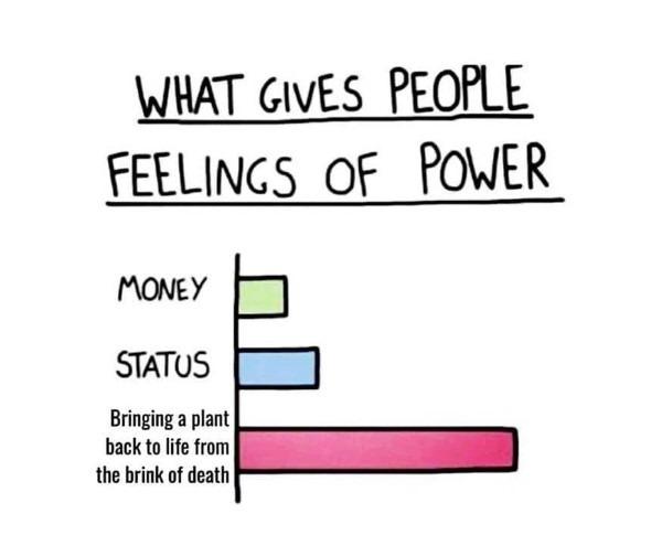Meme of plant power