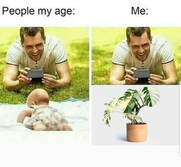 People my age versus people with plants
