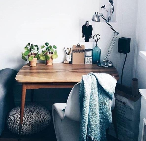Pilea on a desk