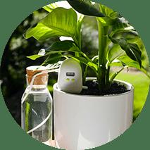 PlantMaid use 3