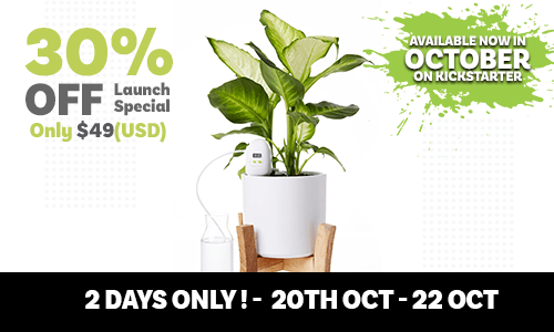 PlantMaid launch special